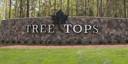 Link to Tree Tops by Lennar